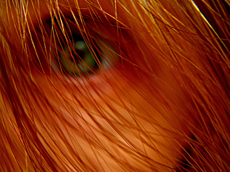 File:Eye.jpg