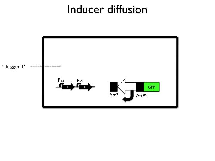 File:Inducer.jpg