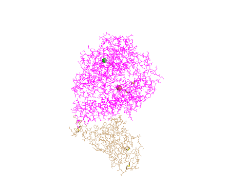 ORDPic4.png