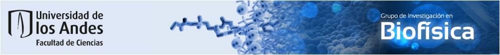 BioPhysicsUA.jpg
