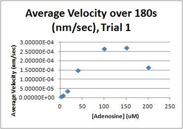 Avg Velocity T1.JPG