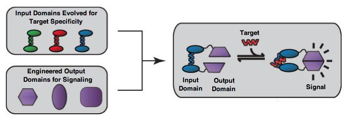 File:ModularPlatform.png