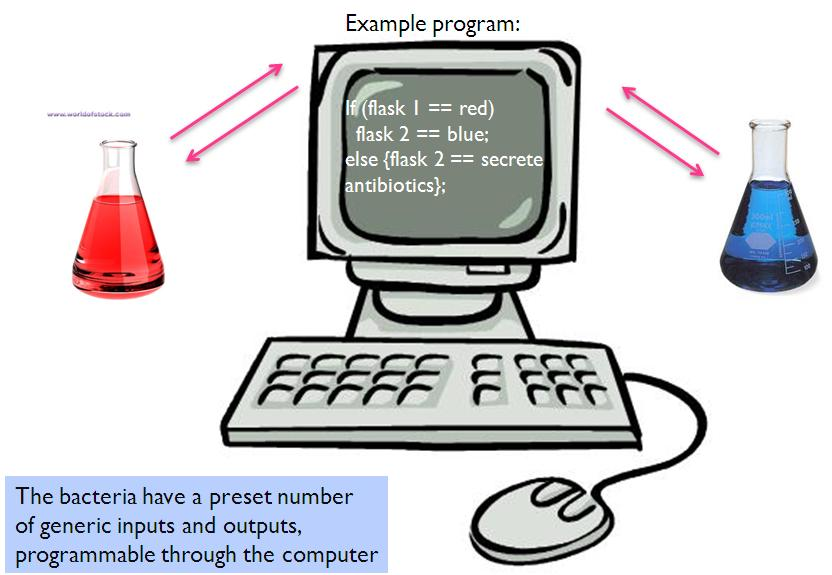 II09 application3.jpg