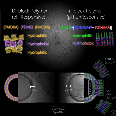 File:Polymerosome-sq.png