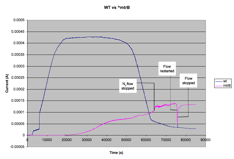 File:Mfc wt mtrB.png