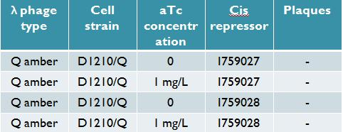 Titering results for Q construct with 2 successful cis repressors