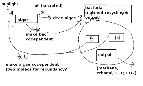 File:System Overview 17-Mar-2010.png
