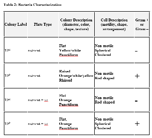 File:Bacteria Characterization.png