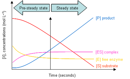 File:Icgems steadystate.png