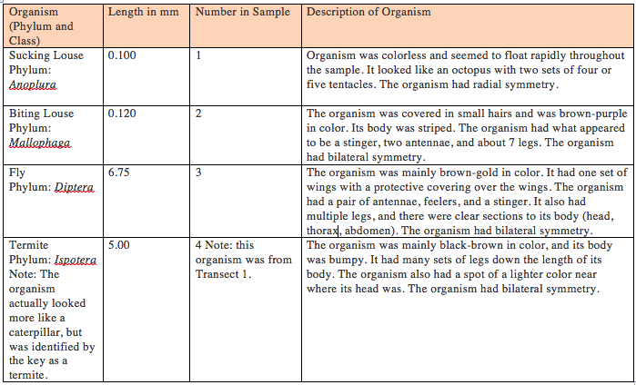 The above table organizes information about the organisms collected via the Berlese funnel. All of the organisms, with the exception of organism #4, were taken from Transect 5. Organism #4 was taken from Transect #1. The table includes the phylum and class of the organism, the length of the organism, the organism's number in the sample, and a description of the organism.