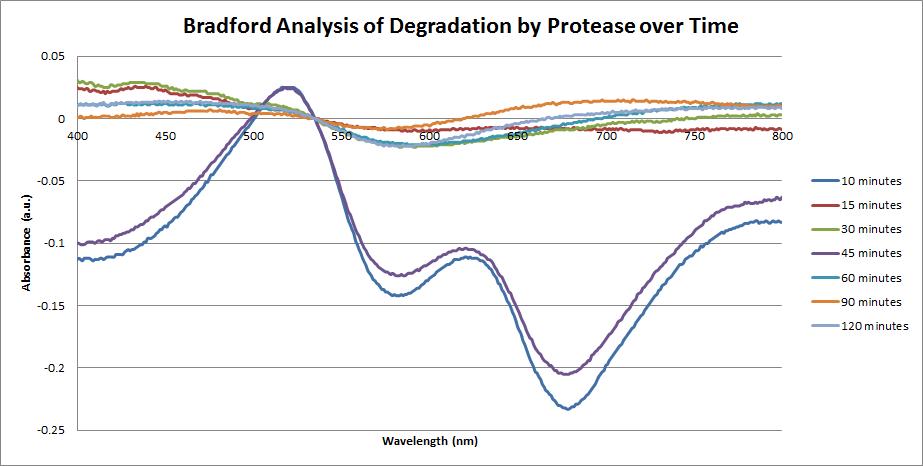 UV-Vis Spectra of Protease Fiber degradation.png