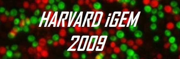 HarvardiGEM2.jpg