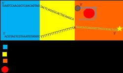 File:BM12 nanosaurs lock opening s.png