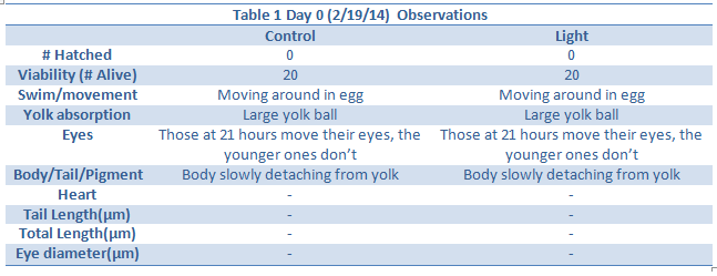 File:Day 0 observations.png