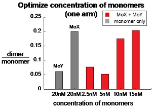 Image:MoAA poly concentration.jpg