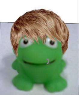 File:Shaun frog.JPG