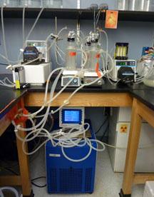 File:Chemostat 1.jpg