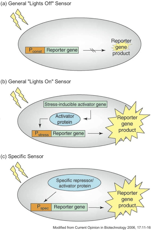 General Biosensors.jpg