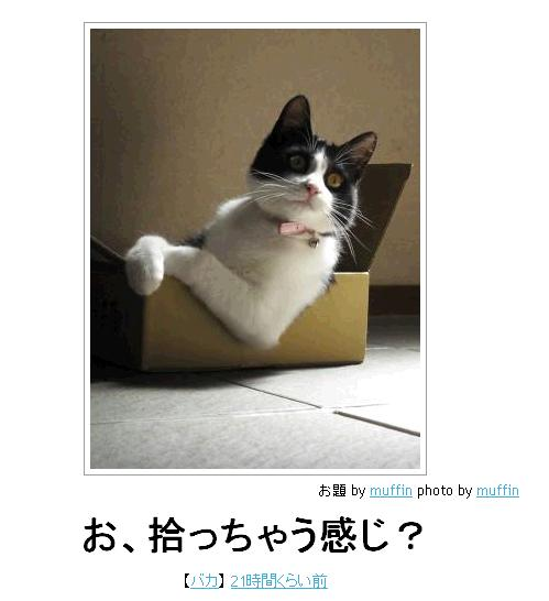 File:7d5d3f1a.jpg