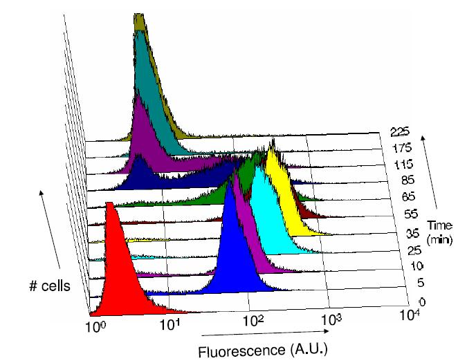 LuxFluorescenceGraph1