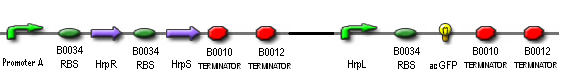File:IC2007 Hrp Device1Con1-.PNG