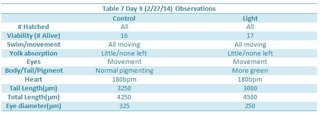 File:Day 9 Observations.png