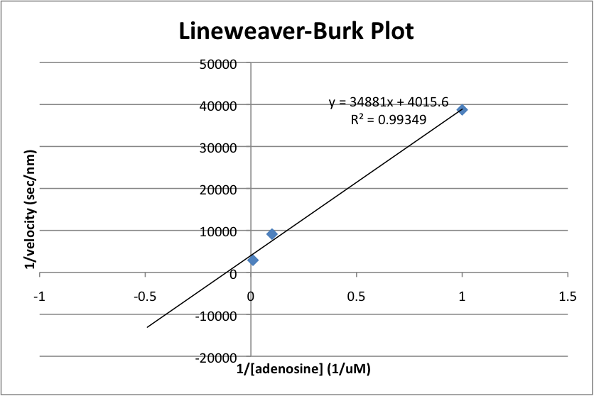 Lineweaver-Burk Plot 2013-02-05.png
