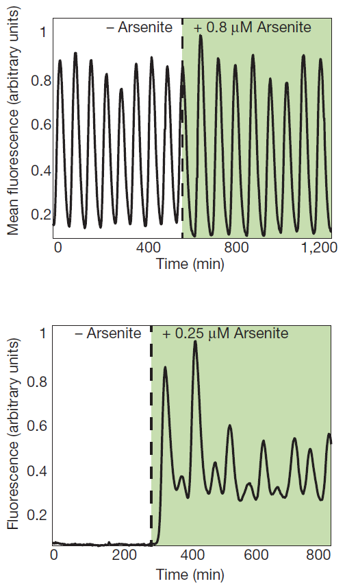 Results of the period modulation (top) and threshold circuit (bottom)[15].