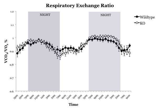 Image:RQ over time.jpg