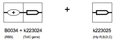 File:2.2b.png