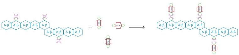 File:HKBU 2013 Step3.jpg