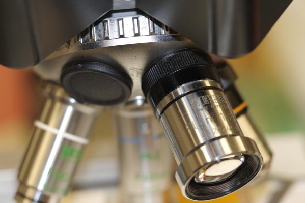 File:Microscopio.png