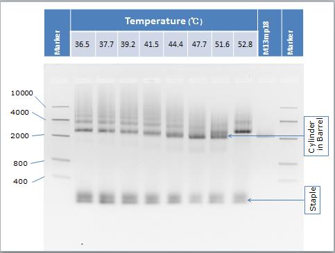 File:Result-SA1-Temp-Todai-new.png