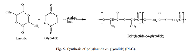 File:PLG Synthesis.png