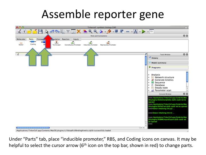 File:1 AssembleReporter.jpg