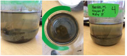 File:Jars.jpg