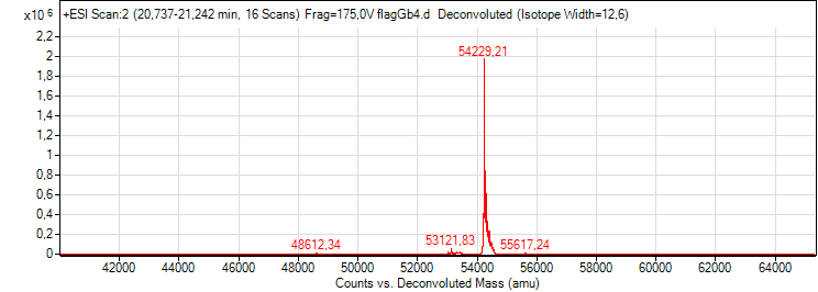 1 +ESI Scan2 (20,737-21,242 min, 16 Scans) Frag=175,0V flagGb4.d Deconvoluted (Isotope Width=12,6).png