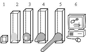 File:Objectives figure.jpg