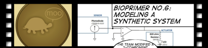 File:BioPrimer6 title bactphoto.png