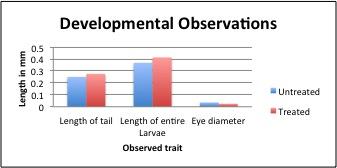 File:Zebrafish measurements.jpg
