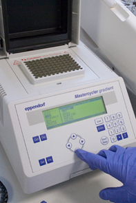 File:Pcr machine17.jpg