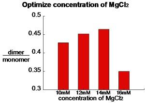 File:Monomer mgcl2.JPG