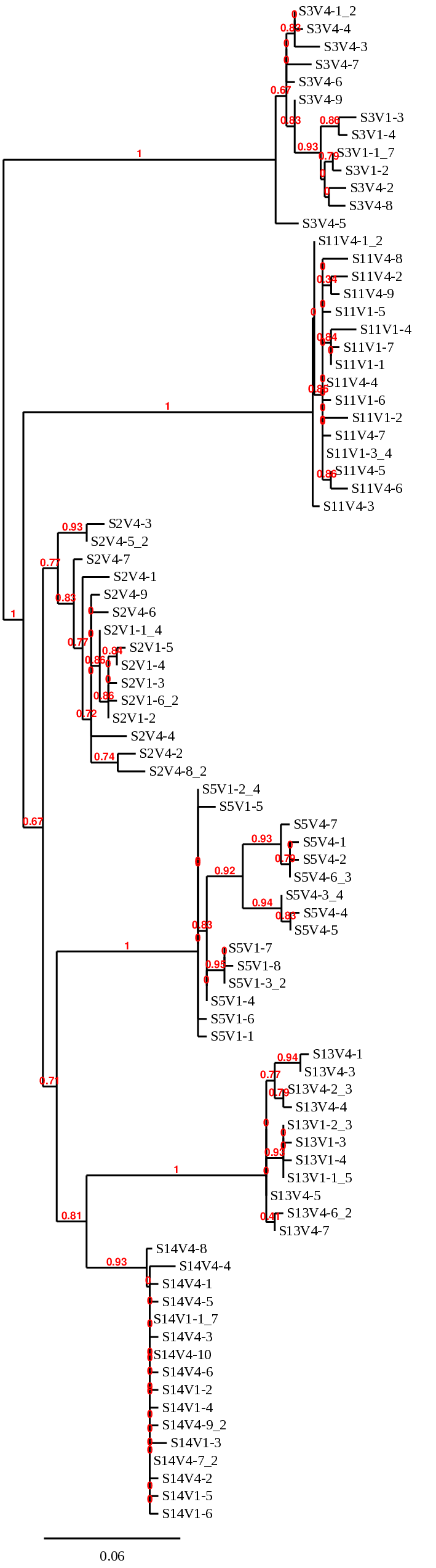 Phylo tree visit 1 AND 4 all sequences.png