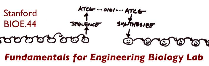 File:Stanfordbioe44title3.jpg