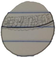 Drawing of sample 2.jpg