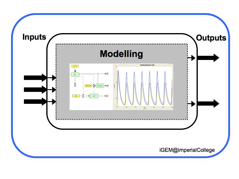 File:IGEM IMPERIAL Methodology Modelling.png