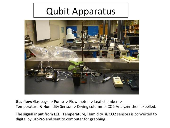 Qubit Photosynthesis Slide 1.jpg