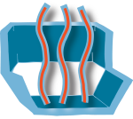 File:BM12 nanosaursReceiver-strands.png