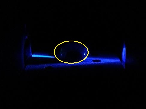 DNAFluorescence.jpg