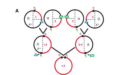 File:Figure 4a.jpg
